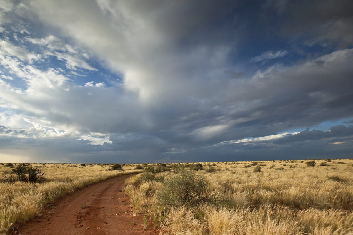 africa road and sky hippocus magazine memorable