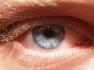 blue eye male close up