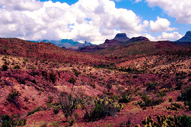 big bend national park in texas desert and big clouds